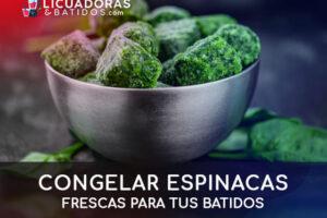 Congelar espinacas frescas para tus batidos