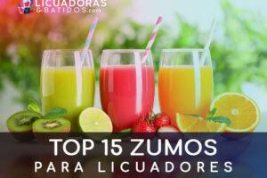 TOP 15 Zumos para licuadoras. Adelgazantes y saludables
